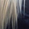 black_black_heart: (platinum blond)
