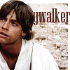 jedibuttercup: (luke skywalker)