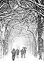 marakara: (Central Park Snow)