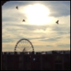 lagilman: (Seattle Wheel)