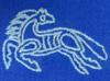 fjorlief: (viking horse)