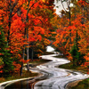 deeplyunhip: (fall road)