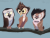 flowerchilde23: (3 owl doctors)