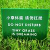brandywine28: (grass dreaming)
