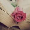 phantomwise: La vie en rose (Default)
