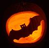 platypus: (pumpkin bat)
