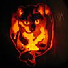 platypus: (pumpkin moly)
