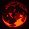 platypus: (pumpkin - moon)