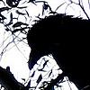 platypus: (b/w raven)