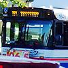 platypus: (mystery bus)