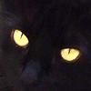 platypus: (Penny eyes)