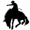 platypus: (cowboy)