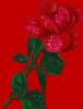sayuri2023: (pic#10918833)