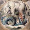 catodon: (leviathan & behemoth)