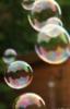 ilkin: (пузыри)