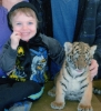 lanalucy: (Ryan and Tiger)