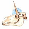 unicorn: a unicorn skull. (∴dream)