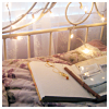 bellflower: An open book sits upon a bed; lights are twisted around the headboard ([Misc] Heavenly moment)