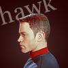 enchanted_manit: (Hawk)