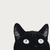 aphrodite_mine: a black cat peers up from the bottom of the icon (cat eyes)