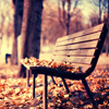 billysgirl5: (Fall bench)
