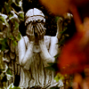 fourandtwenty: (TMC: weeping angel)