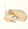 heyslowdown: (deer)