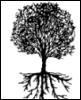 discreet_1: (Family Tree)