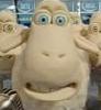 doc_strange: (Sheeple)
