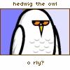 aerama: (Hedwig the Owl)