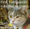 azriona: (Cleo - Invasion)