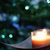 m_cobweb: (candle)