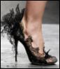 m_cobweb: (shoe)