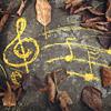 cuttlefishery: (music)