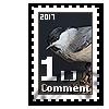 bujhm: Poecile montanus (marka)