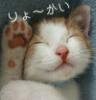 smirkingcat: (ryoukai)
