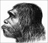mend0za: (neandertalec)