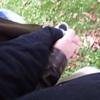 bizarre: (Ian/Mer hand holding park 10.15.06)
