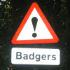 perlmonger: (badger, sign)