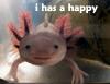 imli: (happy fish thing)