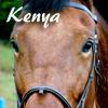 sgamadison: (Kenya)