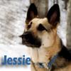 sgamadison: (Jessie)