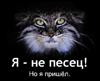 anasazy: (манул)
