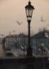lizard_liza: (Praha mystery (doves))