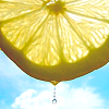 sage: close up of a slice of lemon held up against the sky, dripping (lemon)