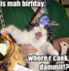 freewaydiva: (It's mah birthday)
