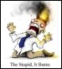 freewaydiva: (Burning Stupid)