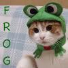 bbm_got_me_good: (frog)