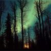 branwyn: (night)