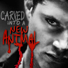 cowards_kiss: (dean - new animal)